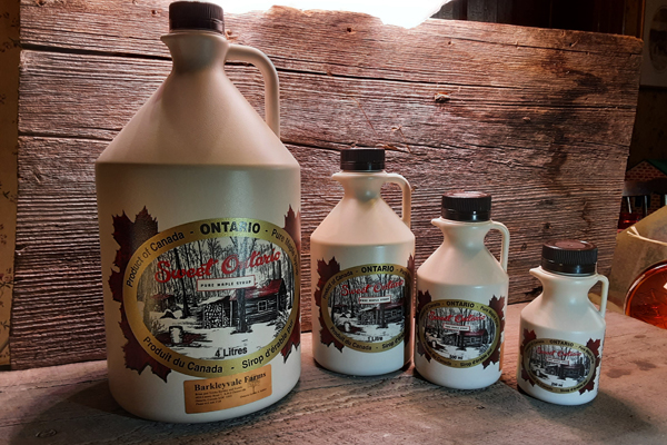Plastic Jugs of 100% Pure Canadian Maple Syrup